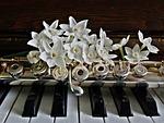 piano, flute, jonquils