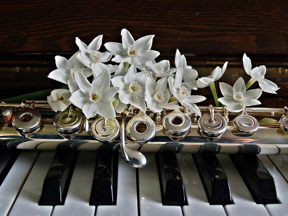 Concerto per flauto e pianoforte