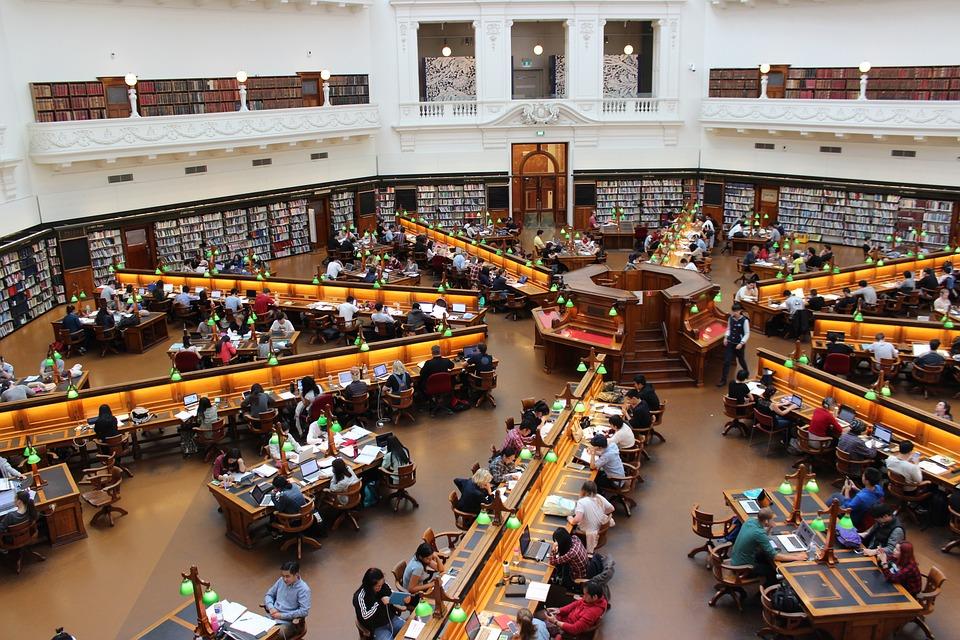 ライブラリ, ラトローブ, 研究, 学生, 行, 勉強, 人, 学ぶ, 留学生, 大学留学, 座っている