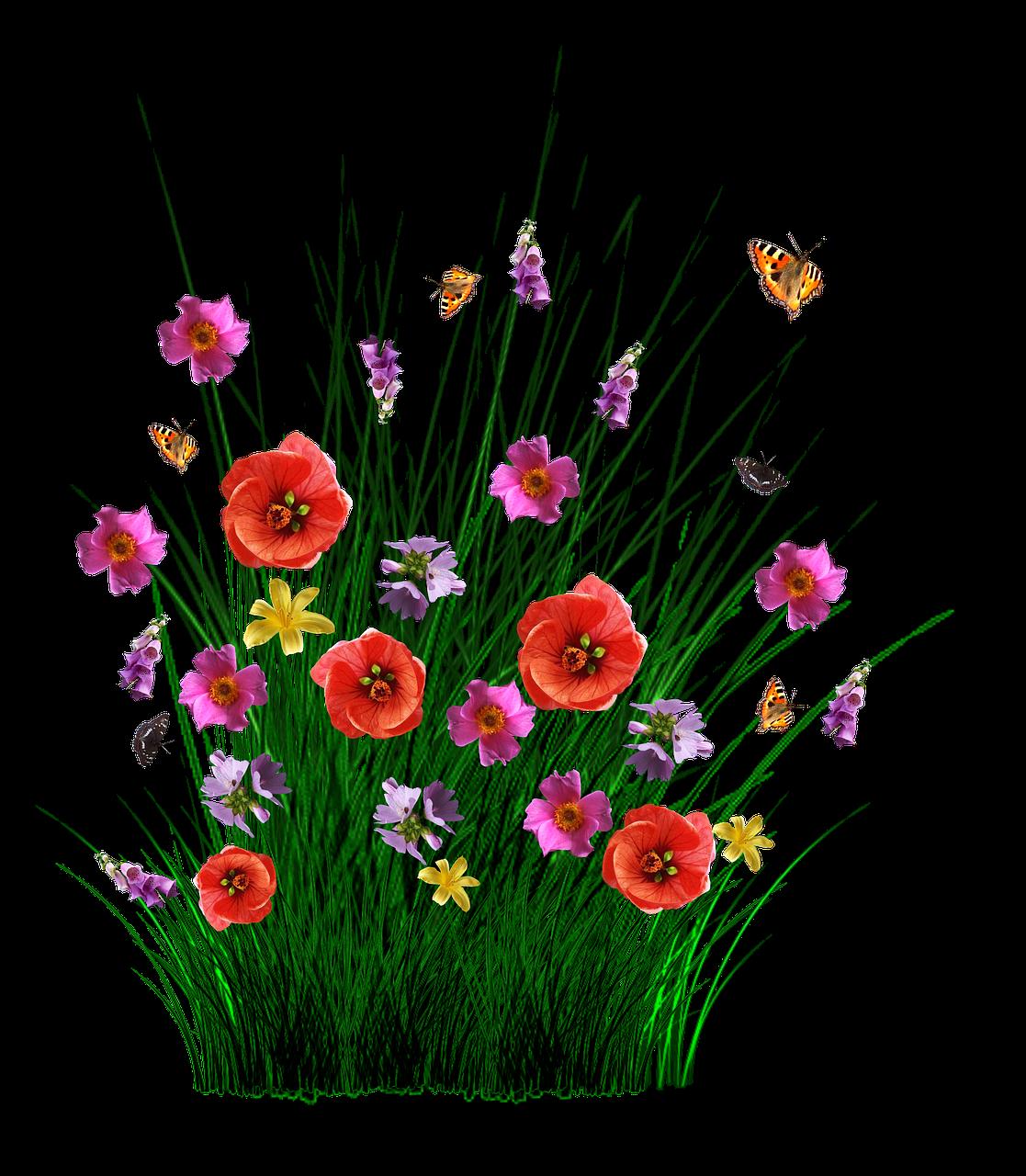 этом файлы в картинках цветы стране пройдут президентские