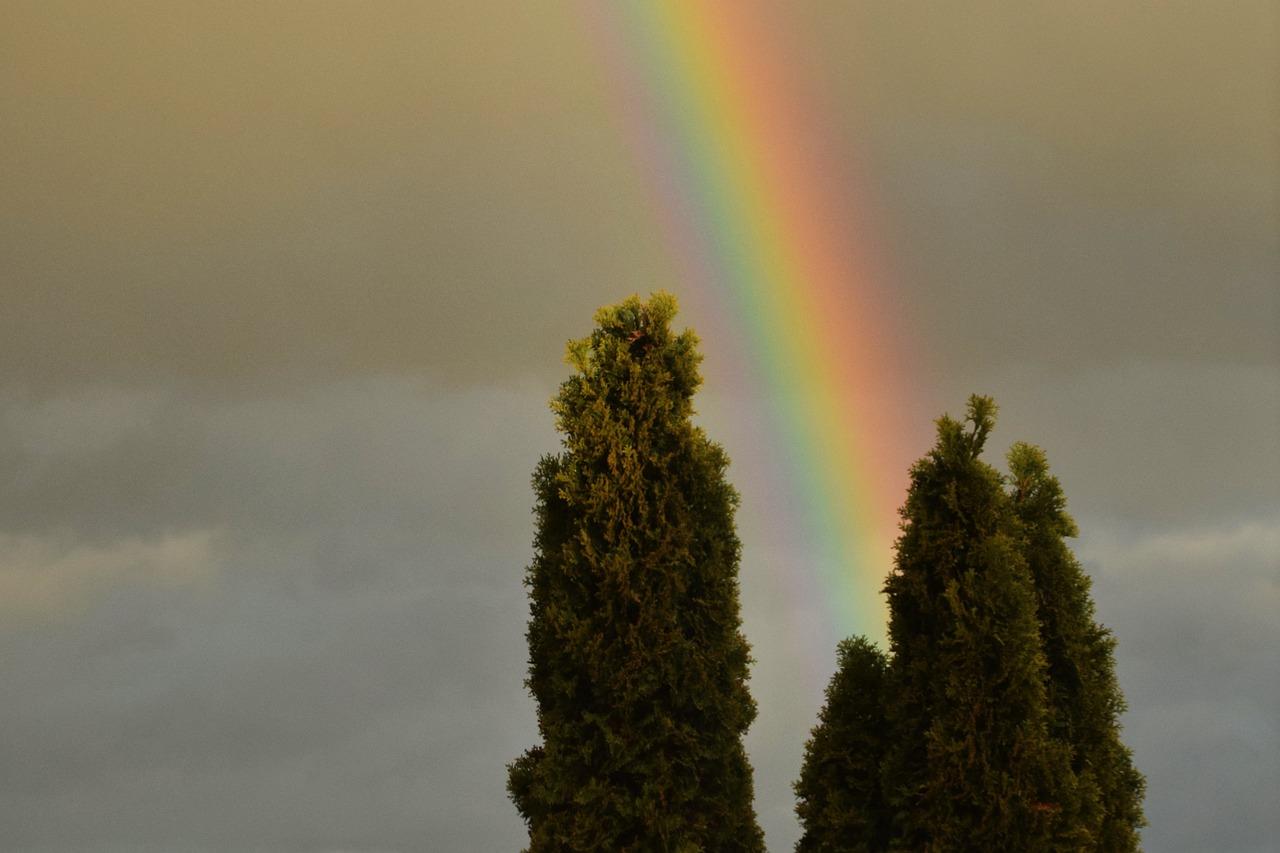 настроение цвета радуги фото календаре весна