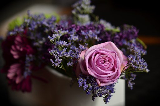 Bouquet Of Roses Images Pixabay Download Free Pictures