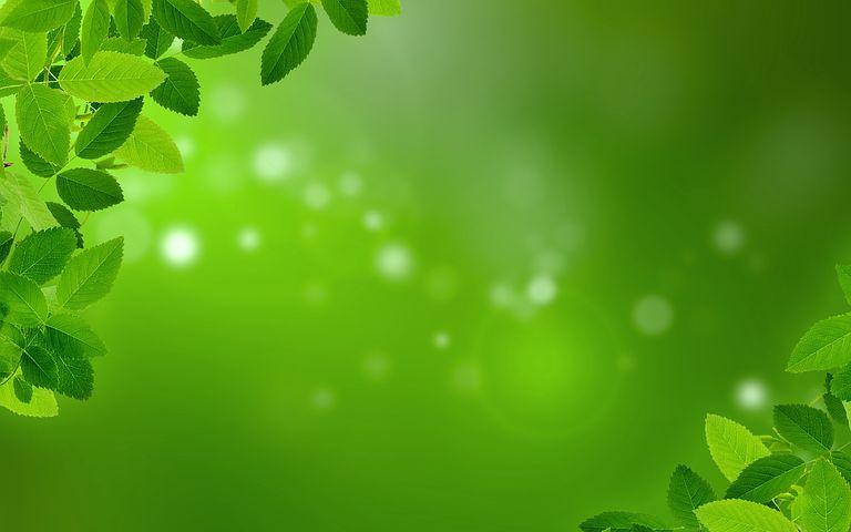 Анимации, открытка с зеленым фоном