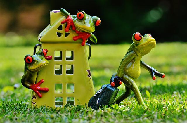 Free photo: Frogs, Farewell, Home, Cute, Frog - Free Image