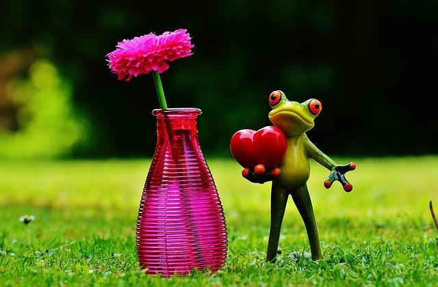 kostenloses foto frosch liebe valentinstag vase kostenloses bild auf pixabay 1407588. Black Bedroom Furniture Sets. Home Design Ideas