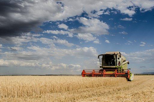 Harvest, Combine Harvester, Agriculture