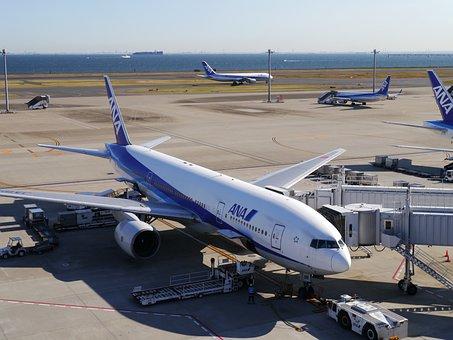 羽田, 羽田空港, 空港, Ana, ジェット機, ターミナル, 滑走路