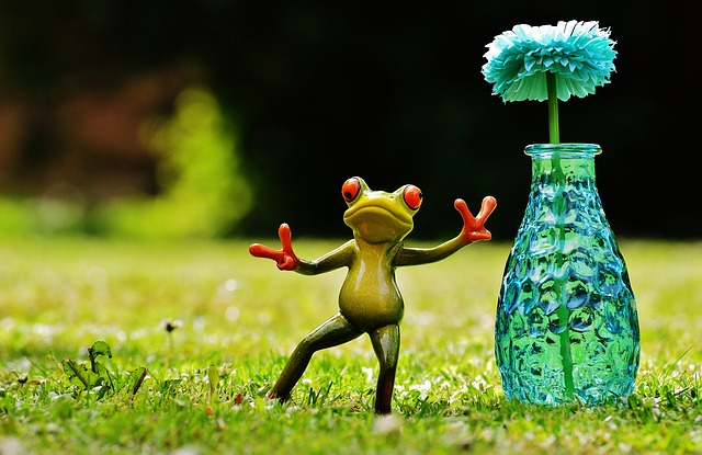 Free Photo Frog Gesture Peace Vase Flower Free Image On Pixabay 1408833