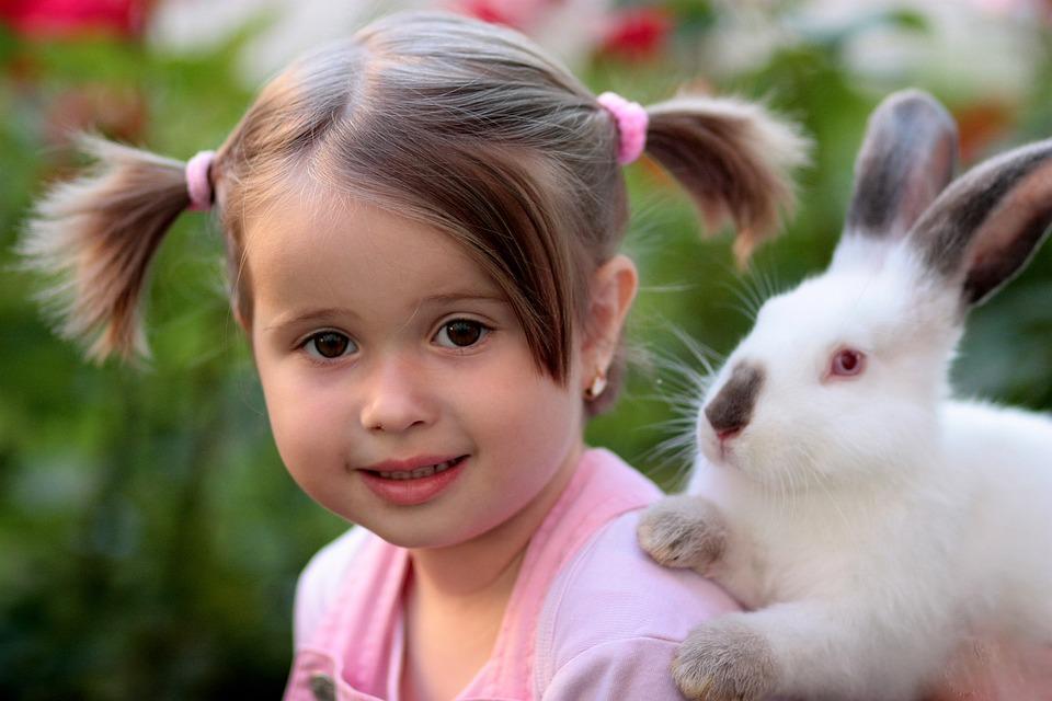 Girl, Rabbit, Friendship, Love, Supplies