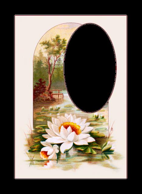 free illustration  vintage  postcards  flowers - free image on pixabay