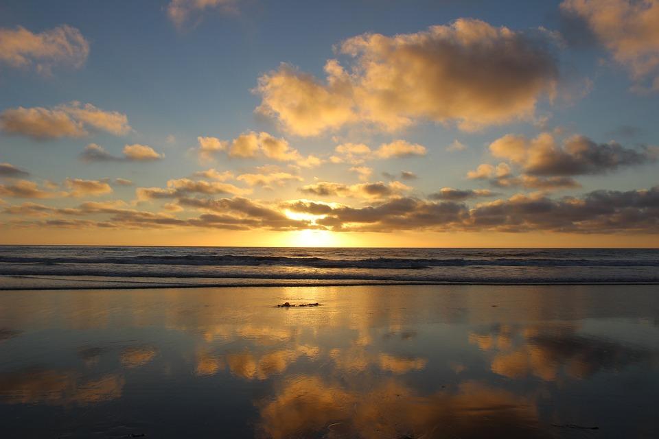 San Diego Torrey Pines State Park 183 Free Photo On Pixabay