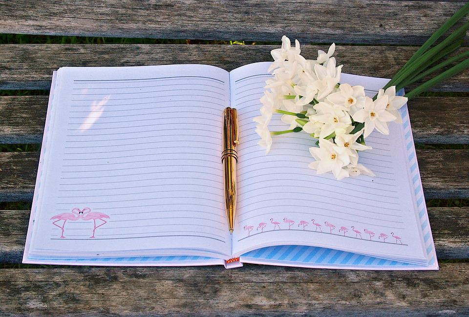 Image result for gratitude journal