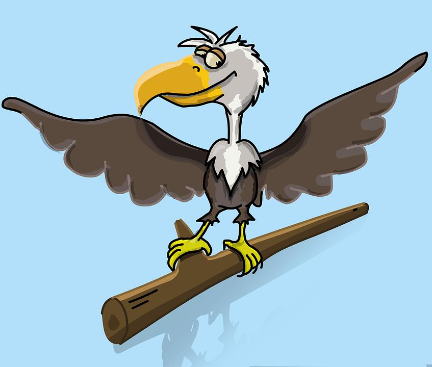 560+ Gambar Burung Elang Kartun Gratis Terbaik