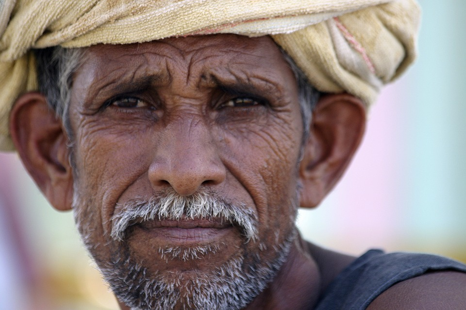 Indian, Farmer, Poor, Agriculture, Portrait, Poverty