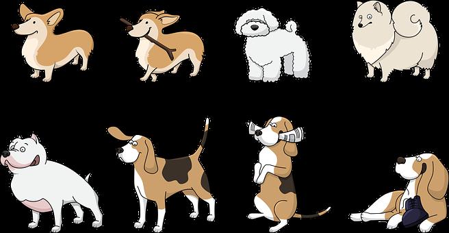 2 000 Free Happy Dog Dog Images Pixabay
