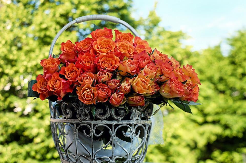 Róż, Bukiet Róż, Kwiat, Pomarańczowy, Romans, Rose Kosz