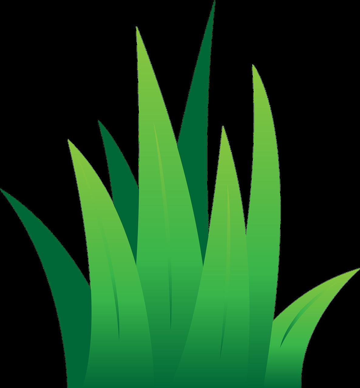 Картинки трава для детей
