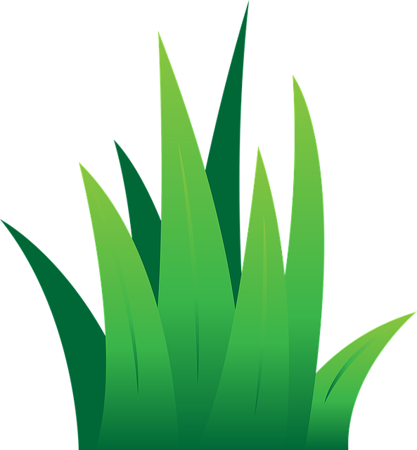 Lawn green grass free vector graphic on pixabay for Lawn care vector