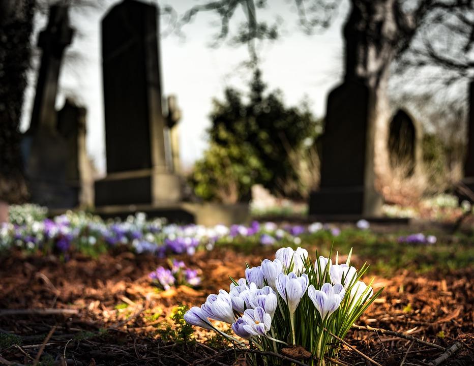 Cmentarz, Kościół, Szafran, Religii, Grób, Kamień