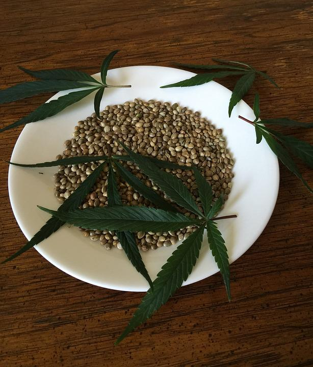 Cannabis Seeds, Hemp Seeds, Food, Ingredient, Hemp