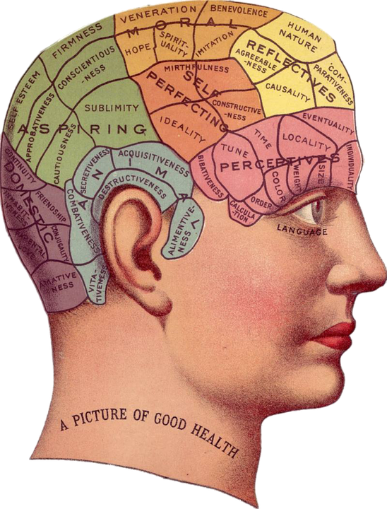 Vintage, Brain, Advertisement, Idea, Memory, Psychology