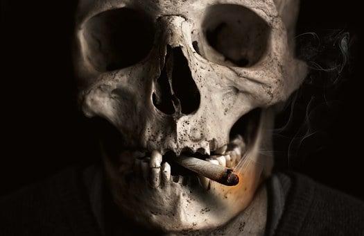 Skull, Bone, Smoking, Cigarette, Smoke