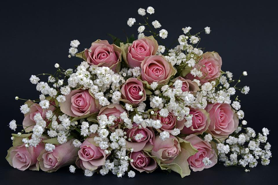 photo gratuite roses fleur rose fleurs rose image gratuite sur pixabay 1420719. Black Bedroom Furniture Sets. Home Design Ideas