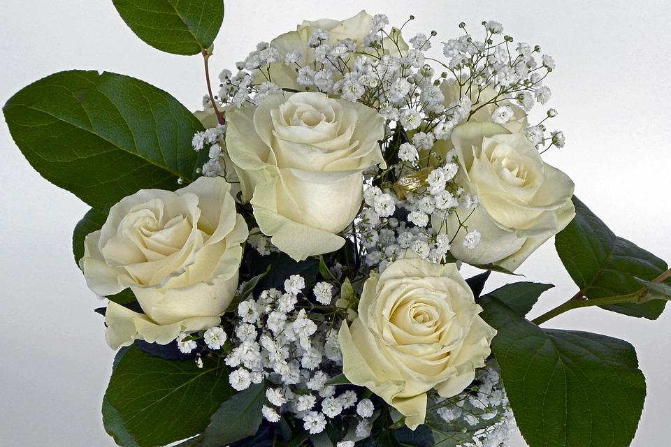 Roses rose flower flowers free photo on pixabay roses rose flower flowers white gypsophila flower mightylinksfo