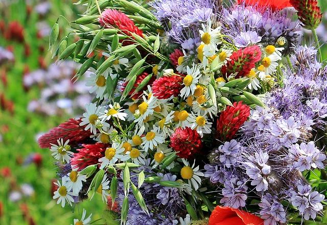 photo gratuite fleurs sauvages bouquet sauvage image gratuite sur pixabay 1423270. Black Bedroom Furniture Sets. Home Design Ideas