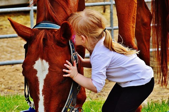 Little Girl Big Horse Kiss  Free Photo On Pixabay-9834