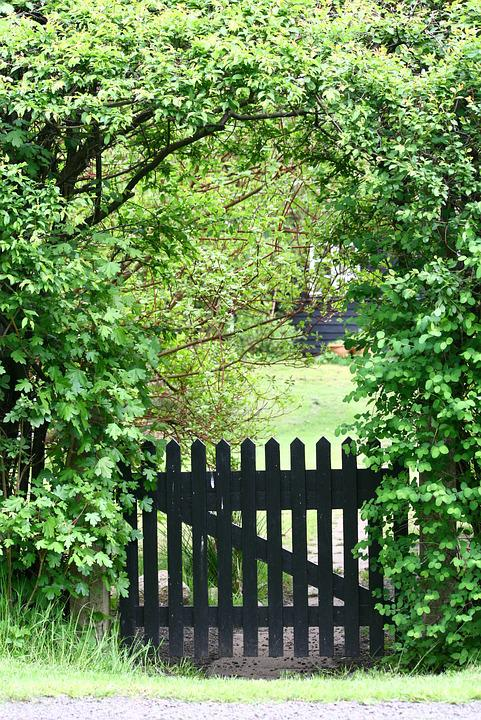 Delightful Garden Gate Holiday House Vacation Hedge Summer