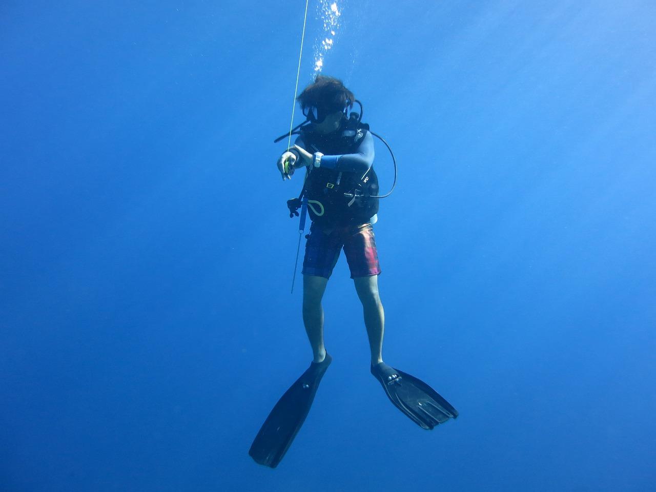интерьере квартиры подводные фотографии водолазов большого