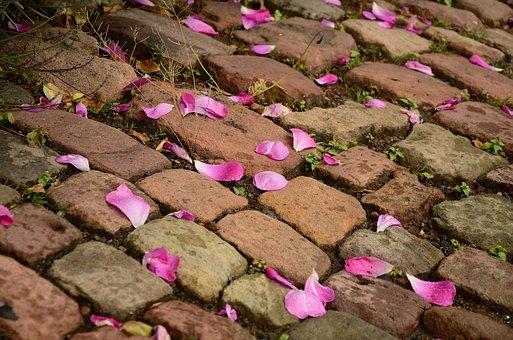 Patch, Paving Stones, Road, Away, Stones