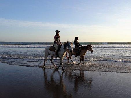 Walk On The Beach, Horses, Bali, Beach