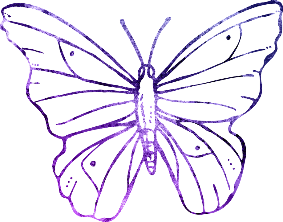 Free illustration: Butterfly, Purple, Outline, Clipart - Free ...