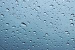 krople, deszcz, mokre