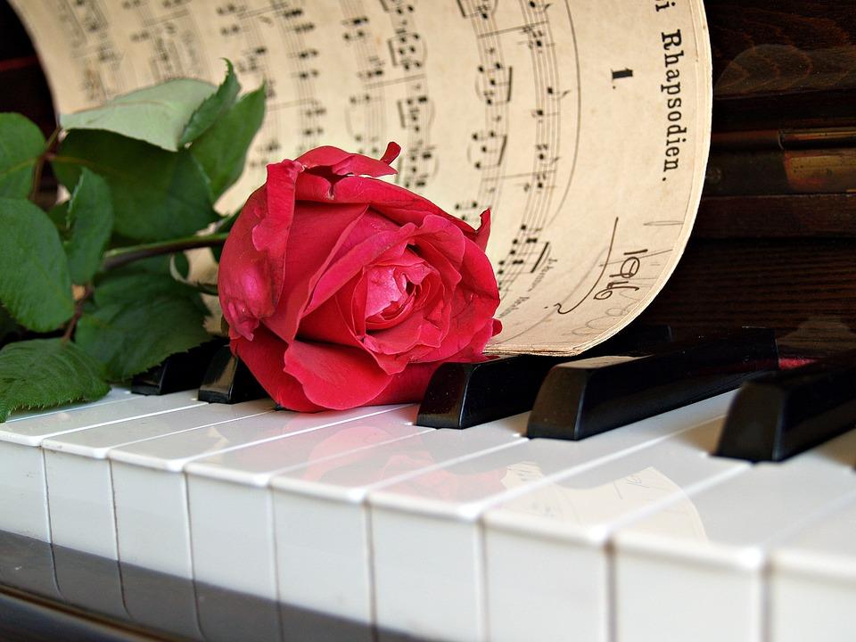 """Résultat de recherche d'images pour """"rose rouge sur une feuille musicale"""""""