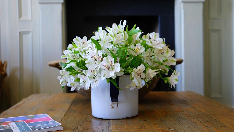 Plant Pot Flower Free Photo On Pixabay