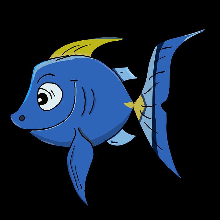 Peixe Peixes-Papagaio Desenho · Imagens grátis no Pixabay