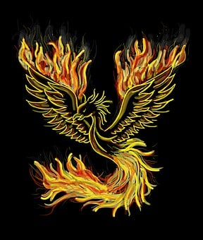 Phoenix, Bird, Fire, Bright Red, Swing