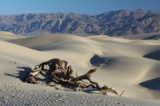 Desert, Death Valley, Sand Dunes