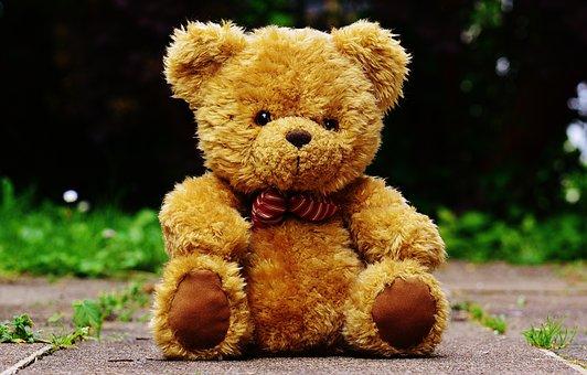 Teddy, Pluszowa, Ładny, Zabawki, Zabawny