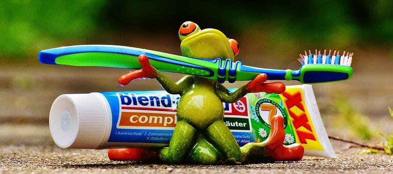 Зубная Паста, Лягушка, Зубная Щетка