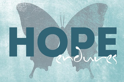 Butterfly Image  with words Hope endures for 301 inspirational and motivational quotes