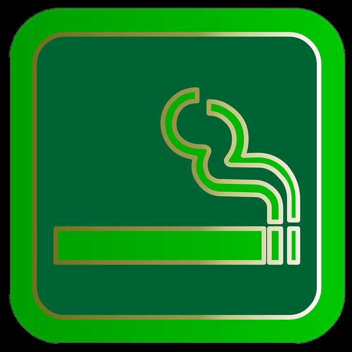 anatómia fajčenia