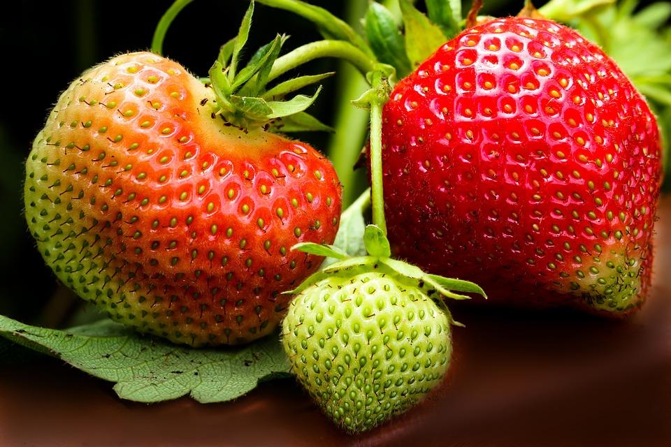 Fresa, Frutas, Rojo, Dulce, Alimentos, Verano