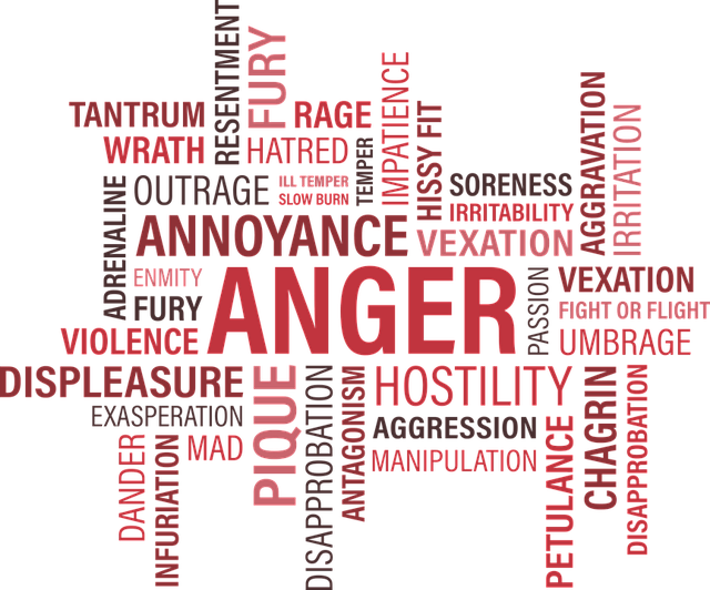 free vector graphic anger word cloud annoy tantrum free image on pixabay 1462088. Black Bedroom Furniture Sets. Home Design Ideas