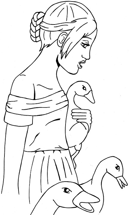 Anime Manga Drawing Comic Goose Gottingen