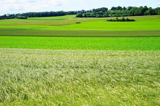 Breitenstein, Landscape, Nature, Idyll