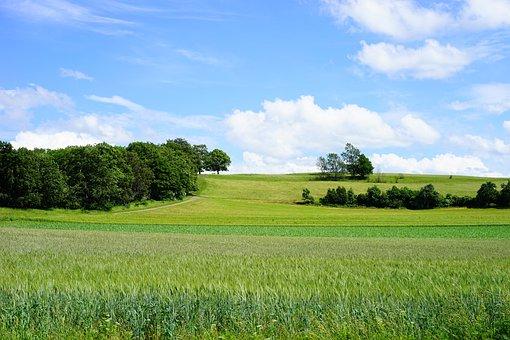 Fields, Reported, Swabian Alb